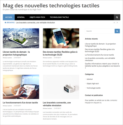 Exemple de blog de PBN
